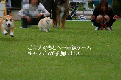 s-IMG_3807.jpg