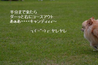 s-IMG_3810.jpg