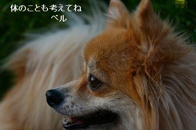 s-IMG_3861.jpg