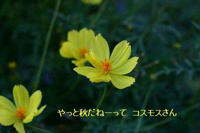 s-IMG_3864.jpg