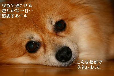 s-IMG_3910.jpg