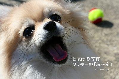 s-IMG_3997.jpg