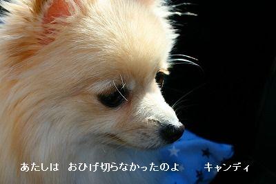 s-IMG_4424.jpg