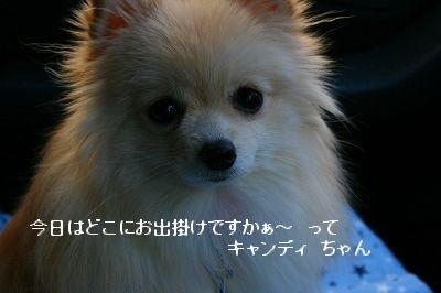s-IMG_4633.jpg