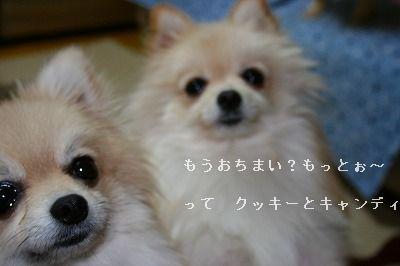 s-IMG_4944.jpg