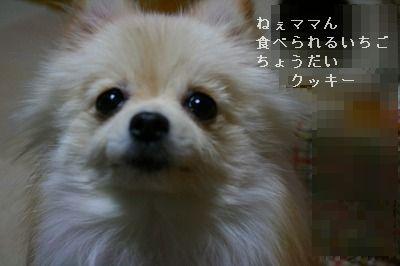 s-IMG_5040.jpg