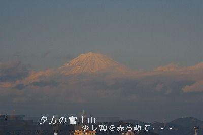 s-IMG_5063.jpg