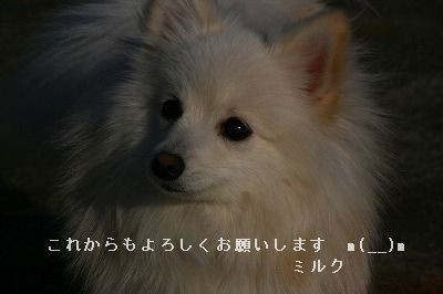 s-IMG_5101.jpg