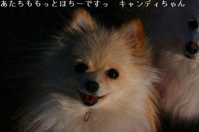 s-IMG_5122.jpg