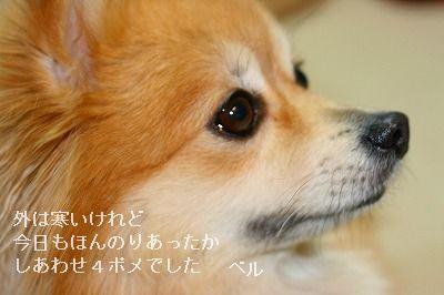 s-IMG_5203.jpg