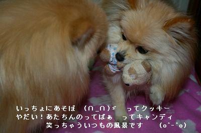 s-IMG_5381.jpg