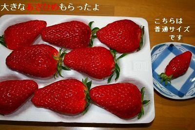 s-IMG_5410.jpg