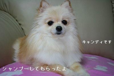 s-IMG_5432.jpg