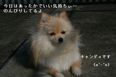 s-IMG_5479.jpg