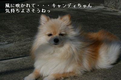 s-IMG_5485.jpg