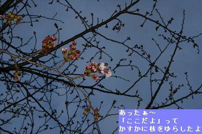 s-IMG_5496.jpg