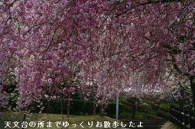 s-IMG_5582.jpg