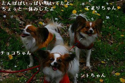 s-IMG_5593.jpg