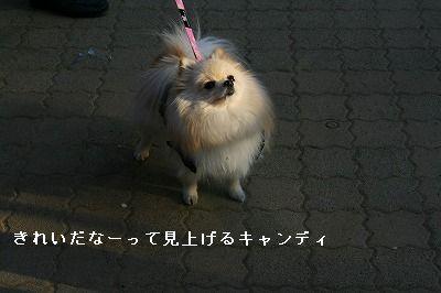 s-IMG_5635.jpg