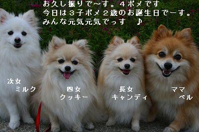 s-IMG_5787.jpg