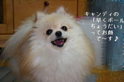 s-IMG_5994.jpg