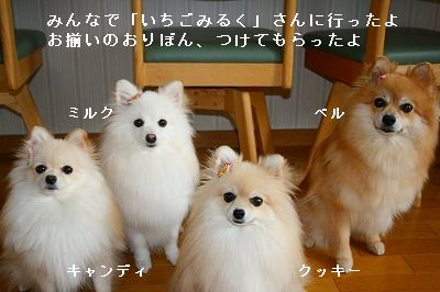 s-IMG_6101.jpg