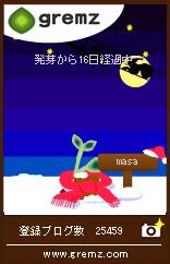 グリムス2本目(クリスマス)
