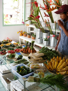 organic-market.jpg