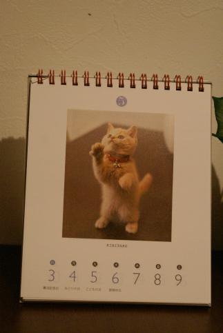 ちびめくりカレンダーに載ったよ!