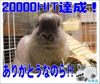 20000HIT達成!!