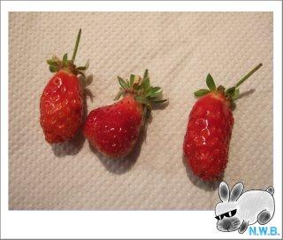 変な形のイチゴ