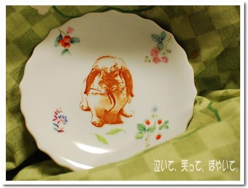 琴ちんのお皿