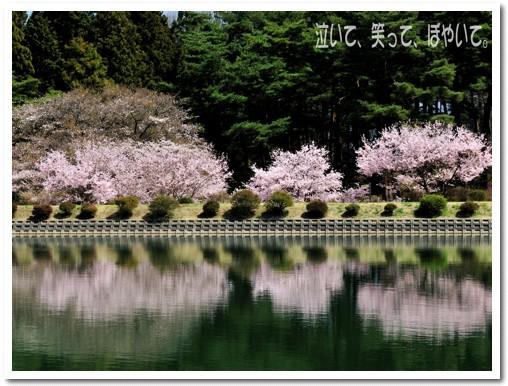 千人塚公園の城ケ池