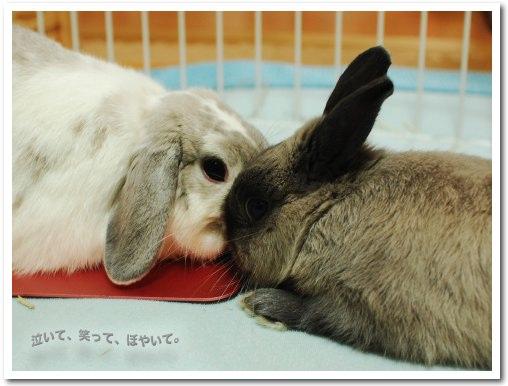 KISS!?