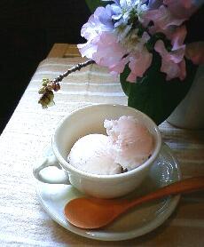 桜のジェラート