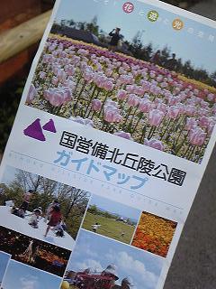 Image115.jpg
