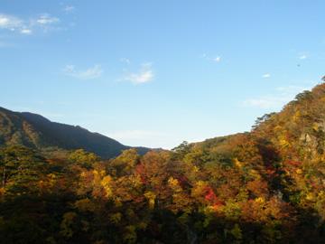 紅葉の山その1