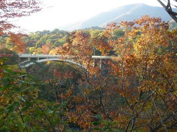 紅葉の山その2