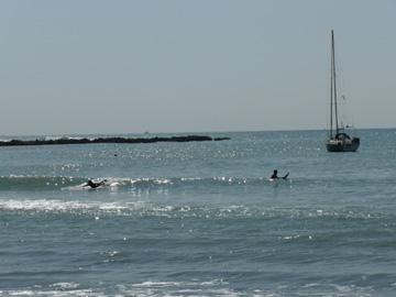 一色海岸をお散歩
