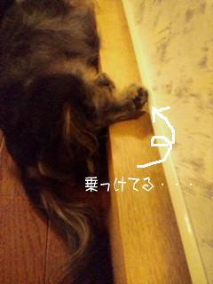 ashikuse2.jpg