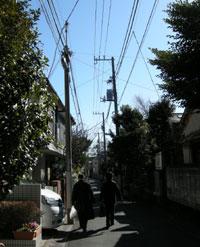 2008-1-20-041.jpg