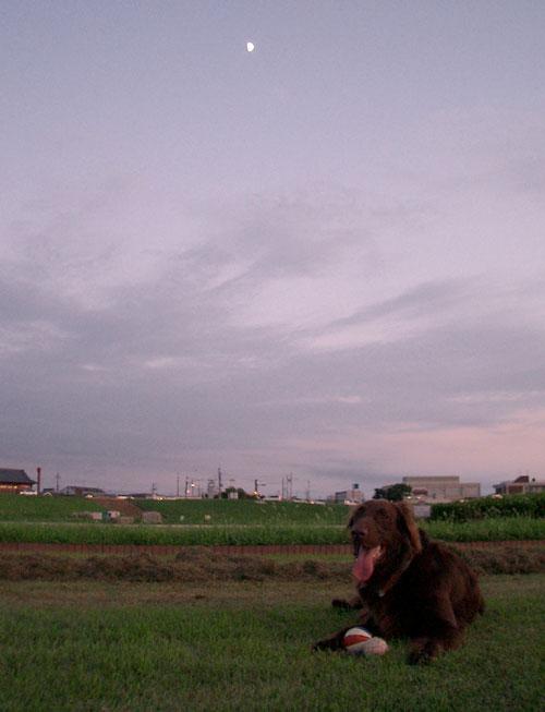090730河川敷-6