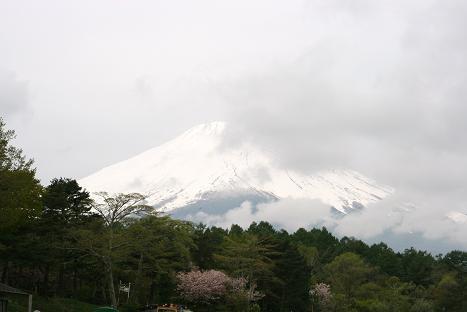 38パグミ富士山2