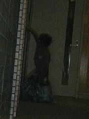 2011143.jpg