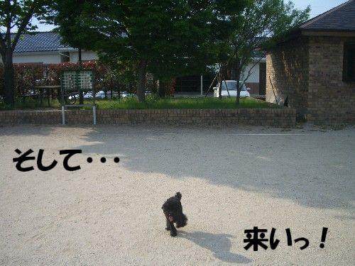 2008051852a.jpg