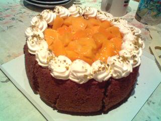 Mango Mousse Cake~