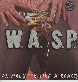WASP-Animal-107608.jpg