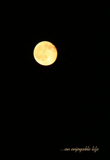 moon20090906.jpg