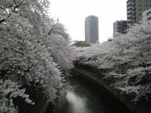神田川01