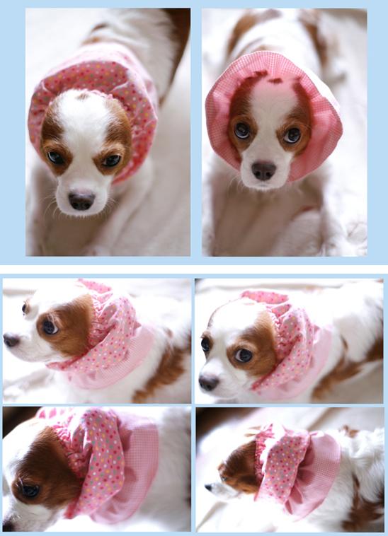 ピンクのスヌード